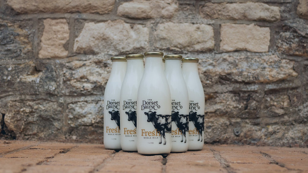 Dorset Dairy Co. Milk