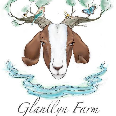 Glanllyn Farm.jpg