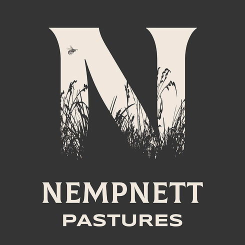 Nempnett Pastures.jpg