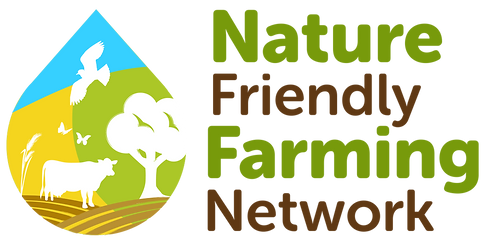 NFFN Logo.png