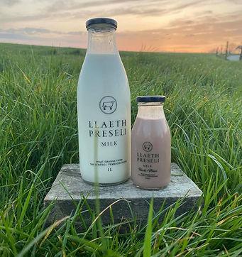 LLaeth Preseli milk.JPG