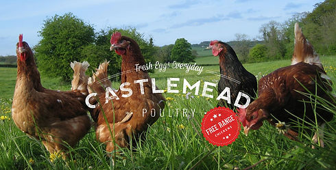 Castlemead Poultry.jpeg