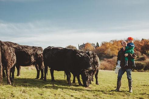 Nether Haugh Farm.jpg