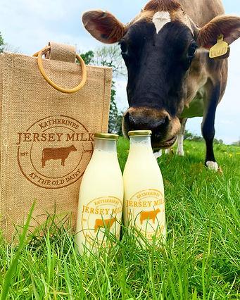 Katherines Jersey Milk.jpg