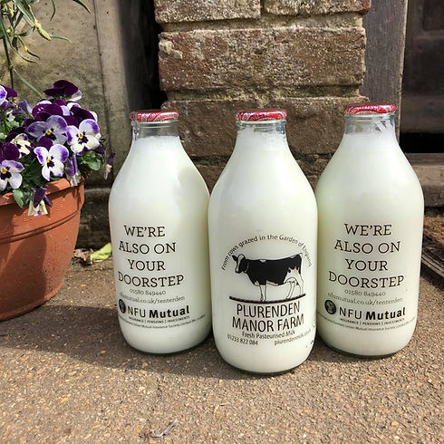 Plurenden Milk.jpg
