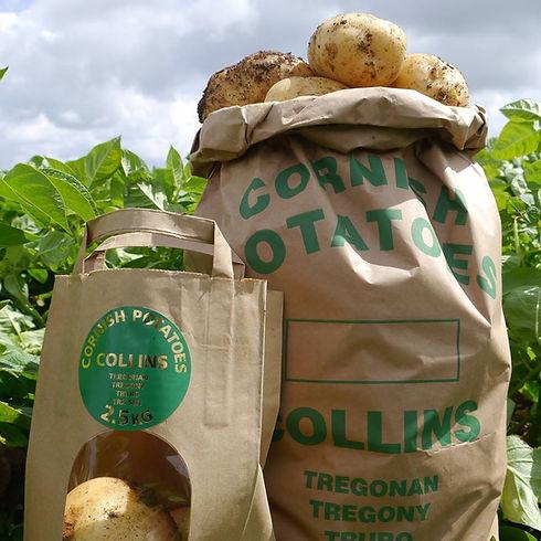 Collins Cornish Potatoes.jpg