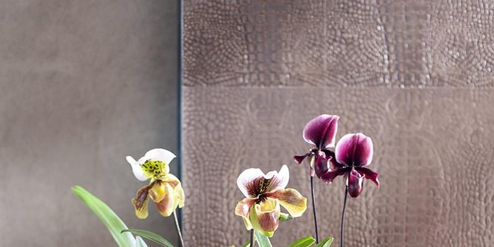 """Atelier """"Kokedama d'Orchidée"""""""