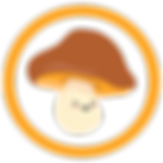 Mushroom Monthly Consultation.png