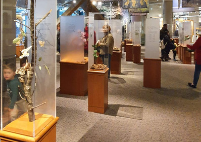 Museu de Ciências Raleigh