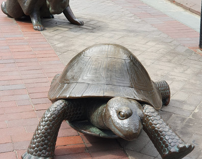 Copley Square - Tortoise and Hare