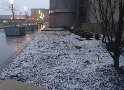 Neve =)