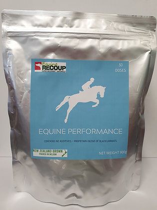 Equine Performance