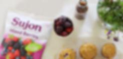Sujon Web Banner June2019.jpg