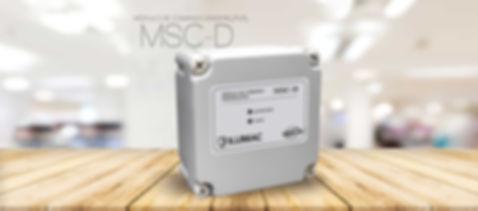 banner-MSC-D.jpg