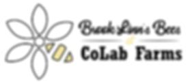 BLBatCoLab2-01.png