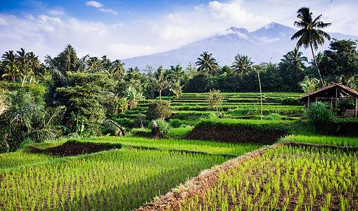 Vortragsbild_Indonesien_Lombok_Lombok_Se