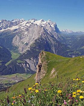 Schweiz.JPG