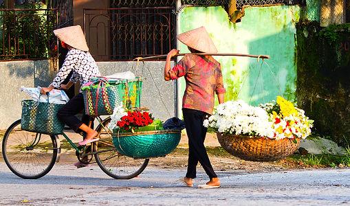 Vortragsbild_Vietnam_Hanoi_Hanoi__Flower