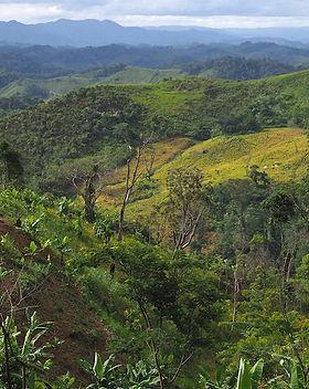 Madagaskar.JPG