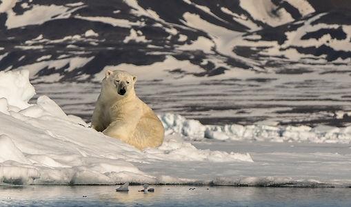 Vortragsbild_Groenland.jpg