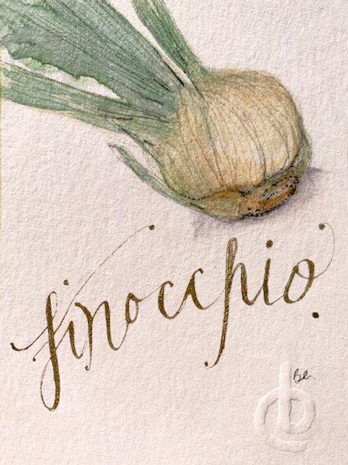 FINOCCHIO rose