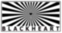 logo.fin1.jpg