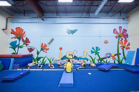 gymnastique club impulsion