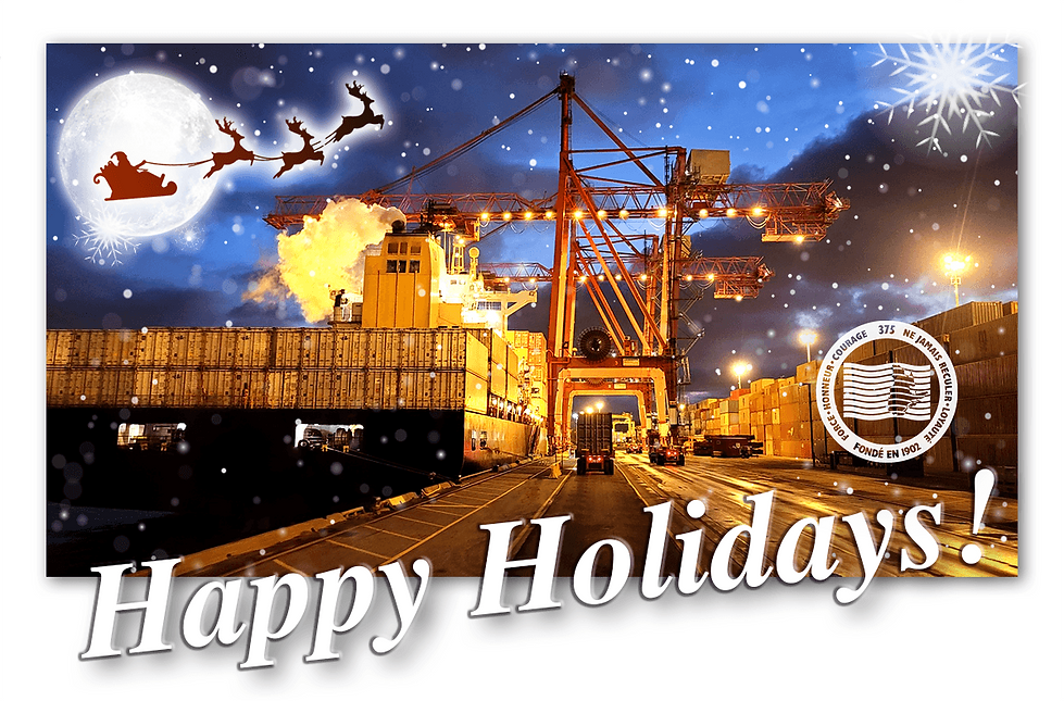 Happy Holidays wix PNG.png