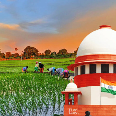 Law-Making Processes in India and the Farm Bills