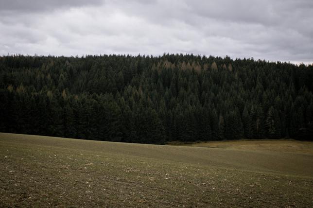 Markneukirchen-3.jpg