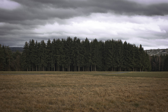 Markneukirchen-4.jpg