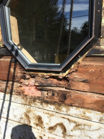 Rot in the existing window framing