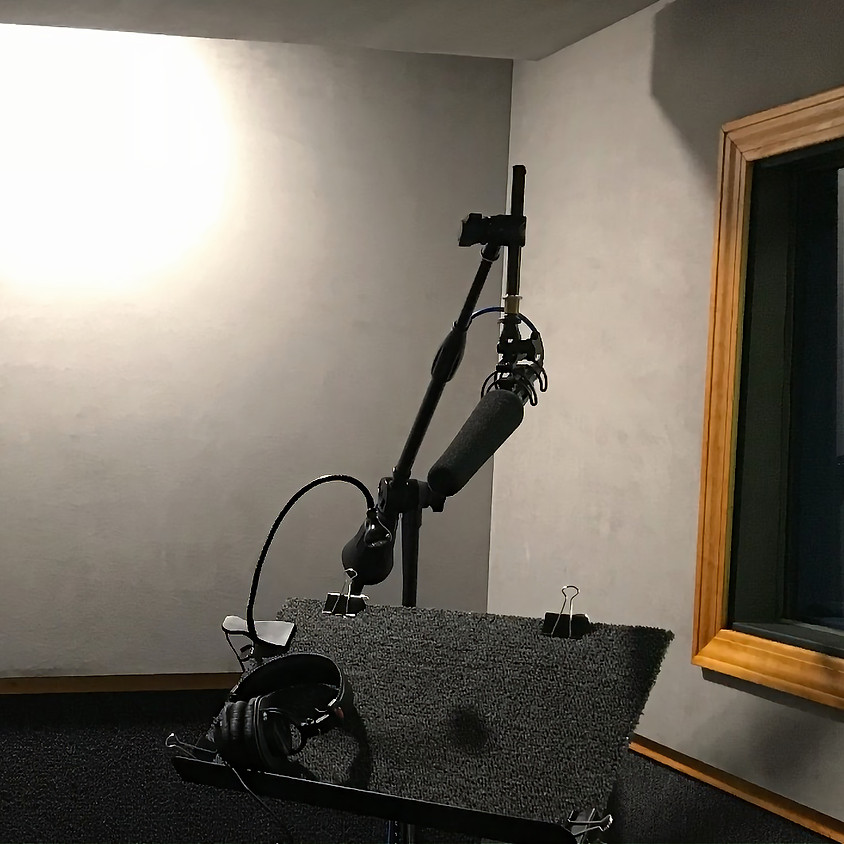 Free Intro to Voice Over