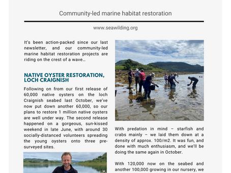 Summer 2021 Newsletter