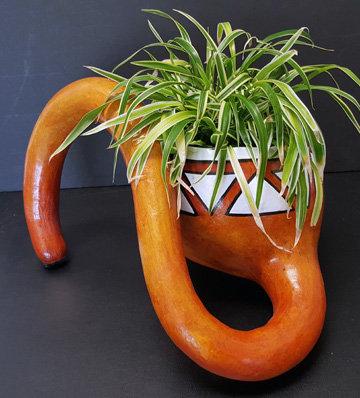 Curly Dipper Pot Gourd
