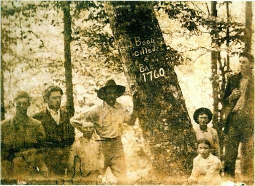 Men standing next to a tree that was carved by Daniel Boone - 1760
