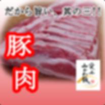餃子 豚肉