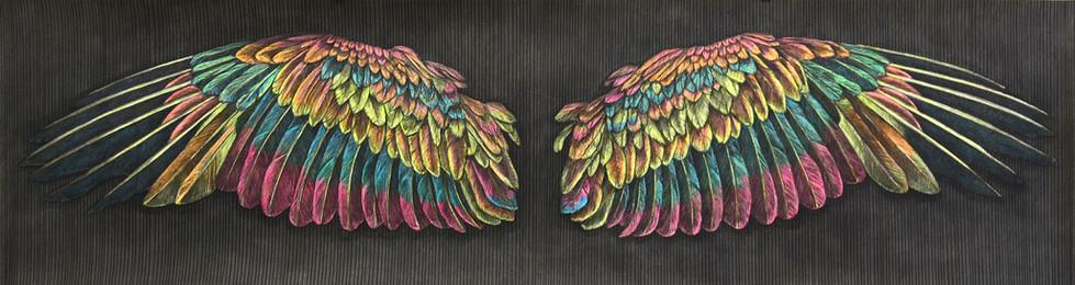 FLÜGEL Pastell, Marker und Kohle  auf Papier 55 x 200 cm 2014