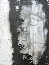HUNTER  Zeichnung und Scherenschnitt ca. 230 x 150 cm 2009