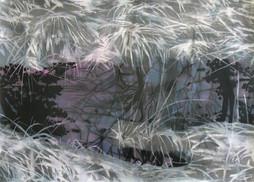 PUDDLE Mischtechnik auf Papier 70 x 50 cm 2011
