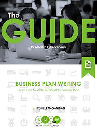 The Guide - Business Plan Writing.jpg