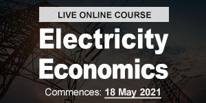 Electricity Economics in Changing Electr