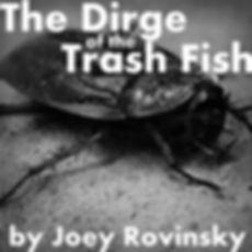 Virgin Island Cockroaches
