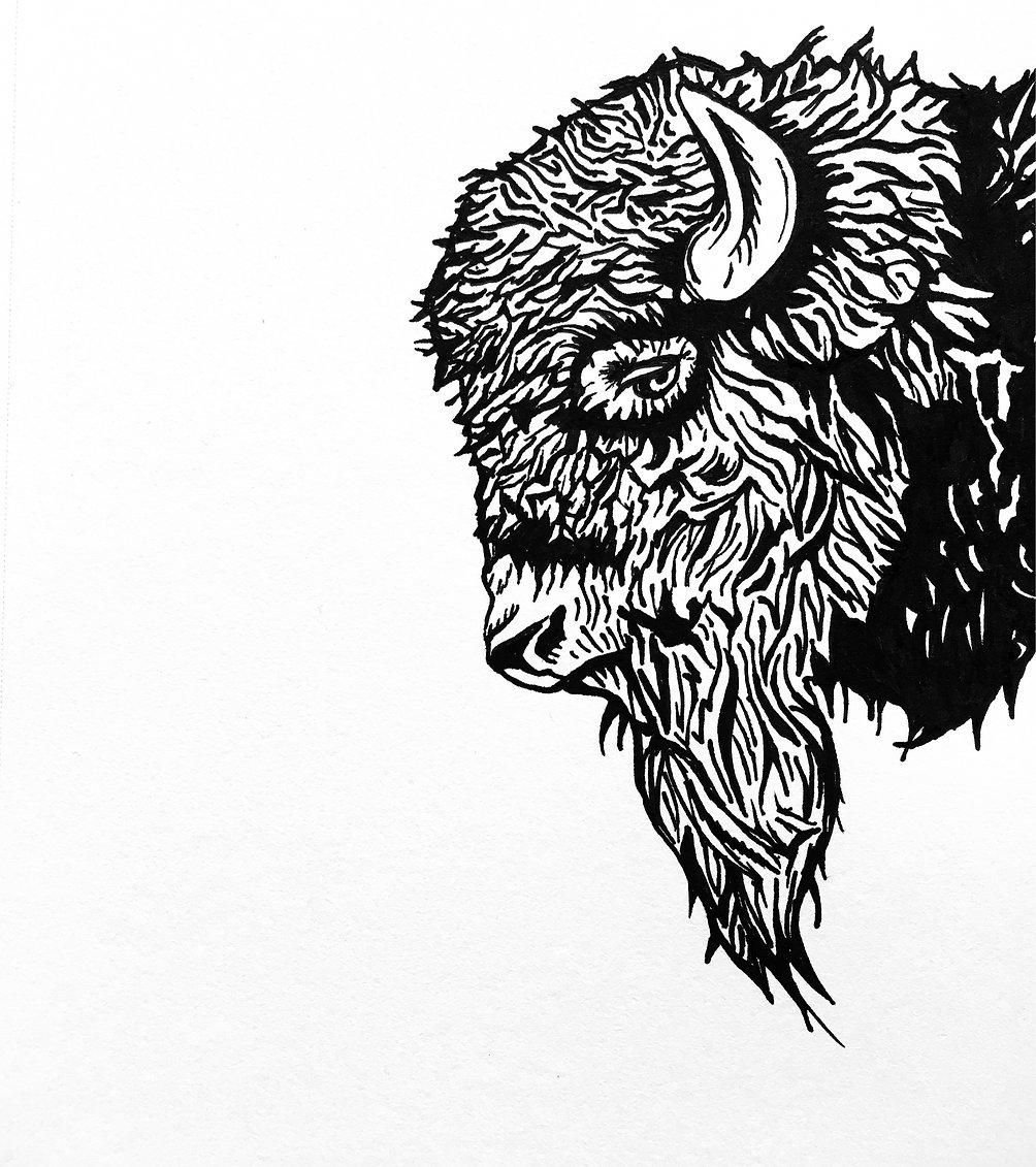 buffalo title