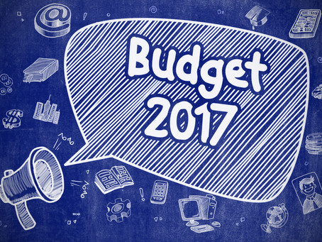 Budget Speech Blues - the good, the bad and the ugly!