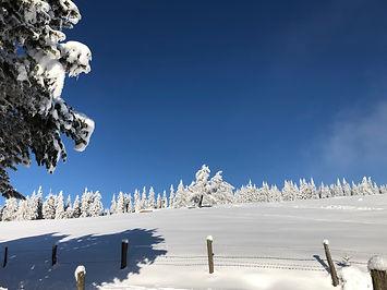 winterlandschaft himmel blau.jpg