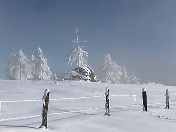 winterland superschön.jpg
