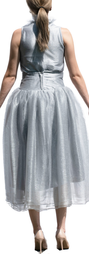 Grey Glitter Tulle Top and Skirt