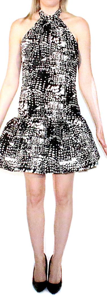 Lilly Stamp Print Drop Waist Dress