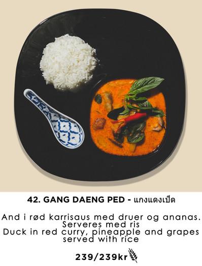 42. Gang daeng ped copy.jpg